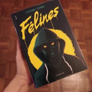 Couverture du livre représentant une créature mi humaine mi féline avec un capuche